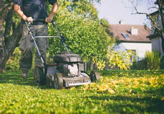 mowing lawn over stray leaves