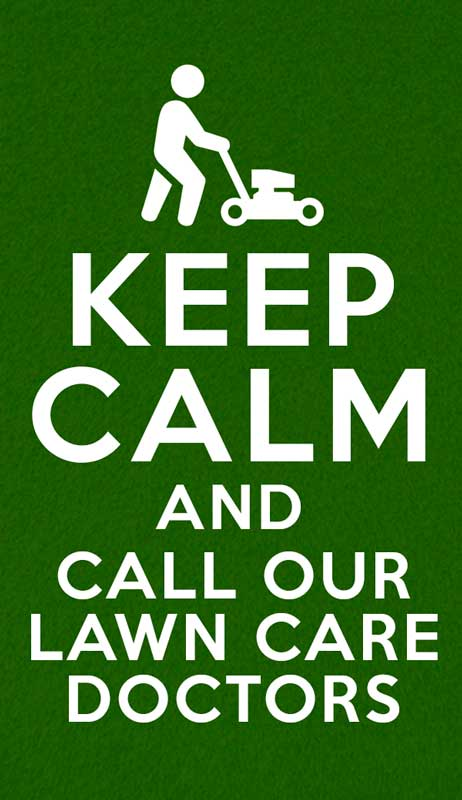 Lawn Care Services in San Antonio TX: Creativity and Care