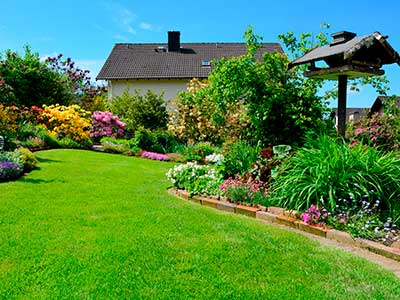 Lawn Maintenance Services in San Antonio TX